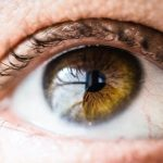 Suho oko